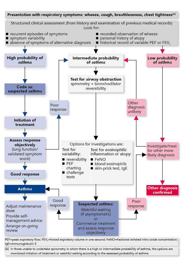 SIGN and BTS management of asthma in adults guideline ...