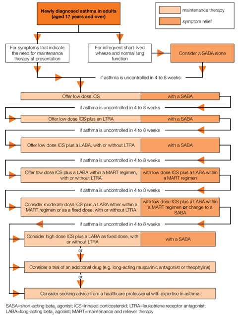 Pharmacological treatment of chronic asthma in adults aged 17 years and over 756x1002